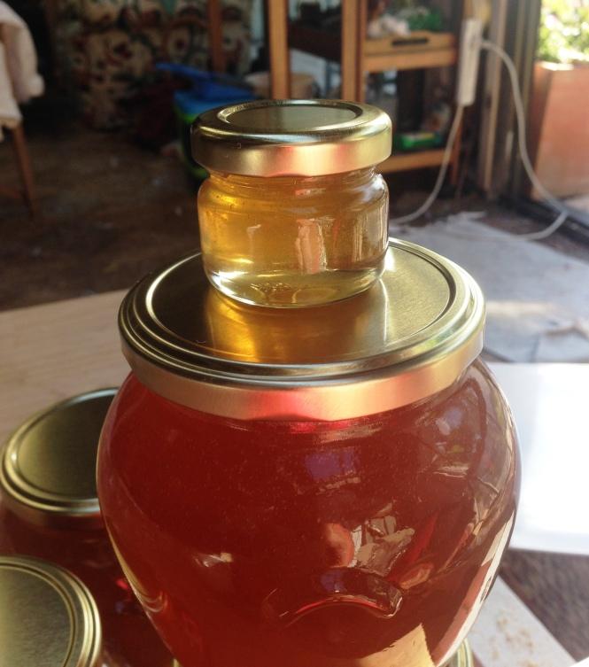 Virgin Honey's first honey sample
